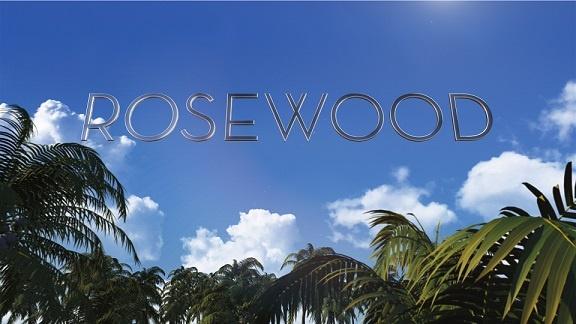 Rosewood Dizi